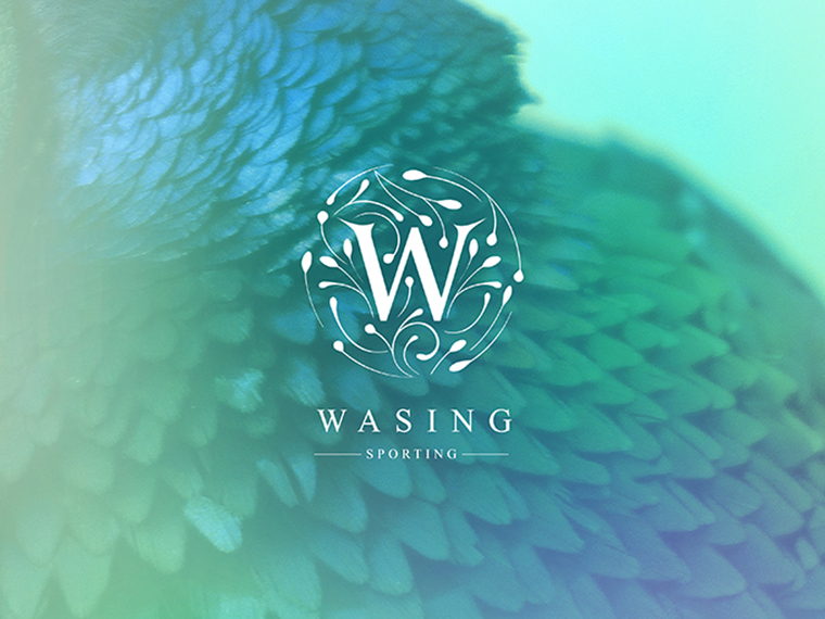 Home_Feature_Wasing