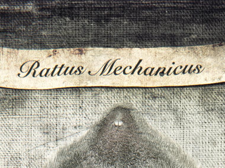 RAT69-2