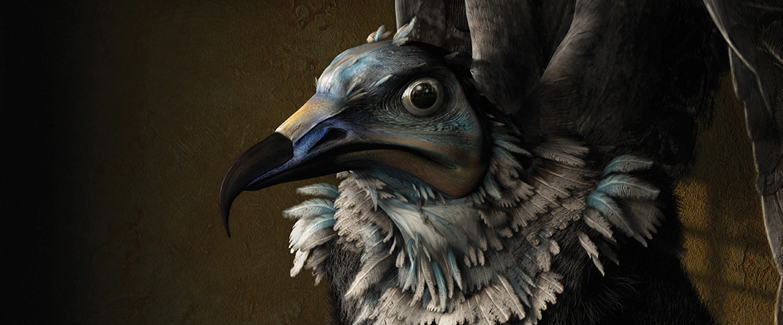 Slideshow_Birdman_3.jpg
