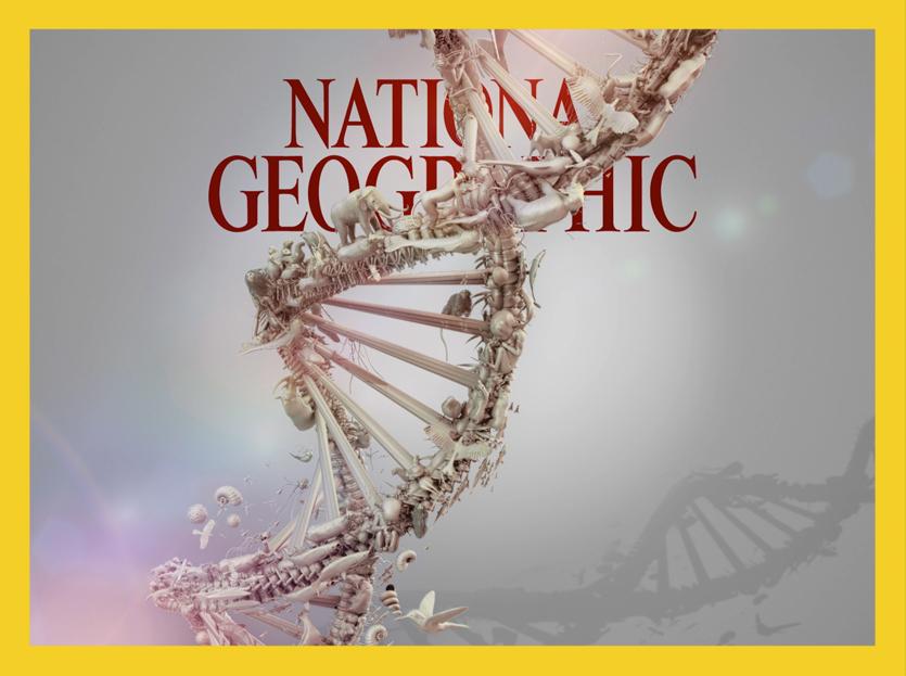 BC NG web cara ipad anim cover image update