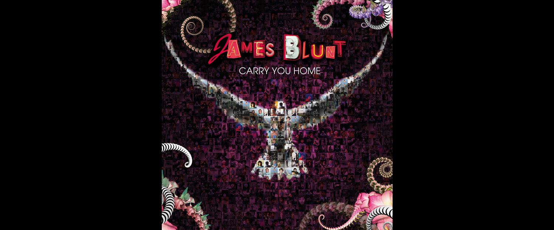 hum cara carry