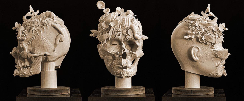 cara skullpture 2